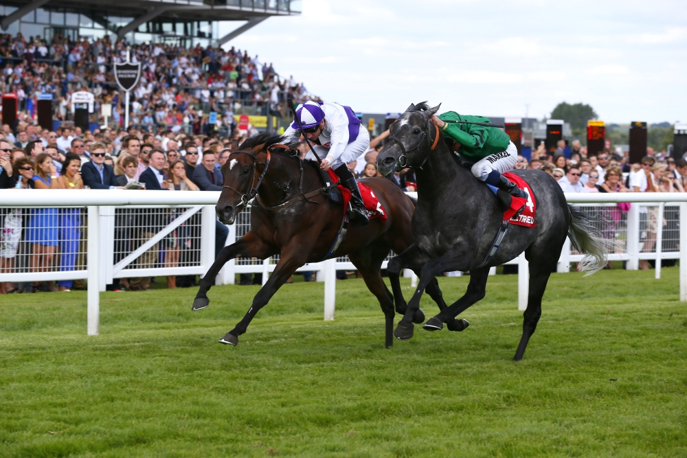 2014 Hungerford Stakes