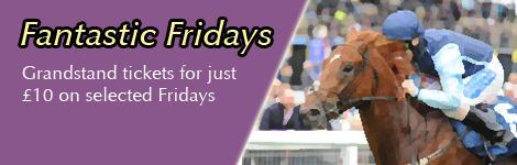 Fantastic-Fridays